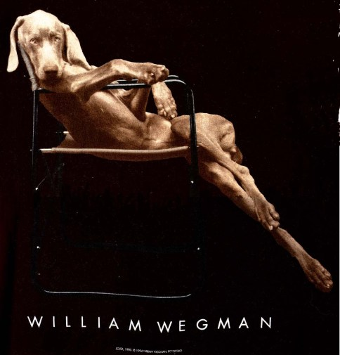williamwegman2